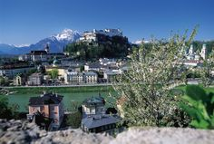 Be stunned by the beauty of the baroque city of Salzburg with our 1,5 hour city tour including the 24-hour Salzburg Card. The tour takes you to the major mounaments in Salzburg, afterwards you spend your day with the Salzburg City Card that gives you various discount in town. Travel with Tourboks.