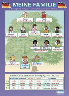 Meine Familie | German Educational School Posters - Infographic