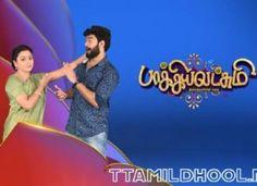 Baakiyalakshmi 15-12-2020 Vijay TV Serial Episode Online, Today Episode, Vijay Tv Serial, Star Network, Video Source, Hd Video, Tv Shows, Collection, Hd Movies