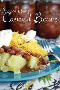 Recipes Using Canned Beans. Did you can any beans this year? Here are some great recipe ideas to use them in!