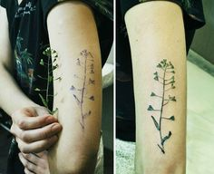 Tattoo Artist Uses Real Leaves And Flowers As Stencils To Create Botanical Tattoos
