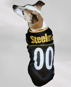 dc538d92e Official NFL Pittsburgh Steelers Football Jersey for your Dog. They come in  all sizes!
