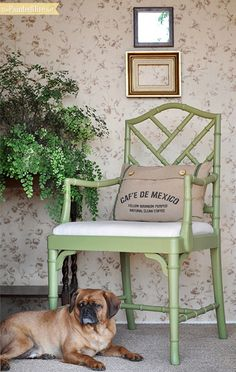 Green painted chair..love the color