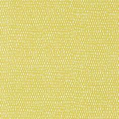 Totak  Citrus wallpaper by Scion