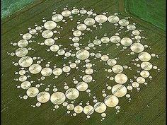 Los extraños círculos de la cosecha