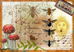 just another volunteer: Inspired by Nick Bantock Mail Art - Linda