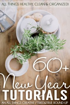 60+ New Year Tutorials - All things healthy, clean, and organized!
