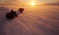 Chukchi hunters travelling from Uelen to Dezhnovka by dog sled on a windy November day. Uelen, Chukotka, Siberia.