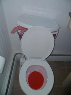 Halloween Bathroom Idea!  Wick a bottle of red pool dye, tip to the side...blood red flush everytime!  Put a red glow stick inside toilet tank, severed hand in tank sticking out!  Awesome!