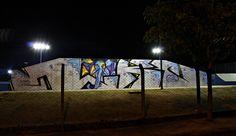 Loko + Guimnomo  Pista de skate em Mirassol-SP .