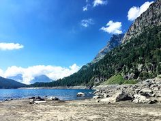 """""""The sound of nature"""" #callme_blest #devero #alpedevero #piemonte #valle #lago #lagodevero #lake #italy #igers #igerspiemonte #photo #nature #sound #sky #bluesky #tree #green #instadaily #instaphoto #photogram #photographer #photooftheday #instant #instamoments #travel #discover #discoveritaly"""