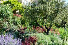 Viens, Provence Holiday Rental House With Pool - Domaine La Jauberte   www.theluberon.com