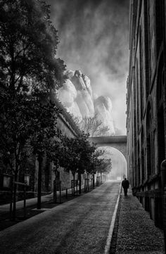 Morning walk Photo by Ido Meirovich -- National Geographic Your Shot