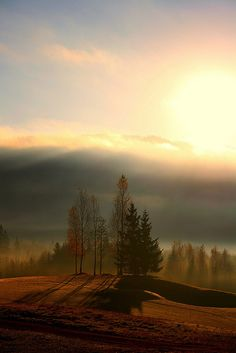 a misty sunrise lights the trees in Swedish mountains. Asgeir Kolberg Sunrise in Lier