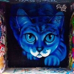Artist: Matt Nico --- Location: Rennes, France. #street #art #cat