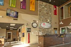 Image result for veterinary hospital lobby designs