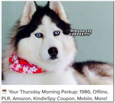 ☕ Your Thursday Morning Perkup: 1986, Offline, PLR, Amazon, KindleSpy Coupon, Mobile, More!