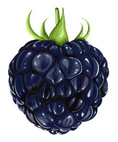 Blackberry Fruit PNG Clipart