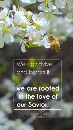 """we can thrive and bloom if we are rooted in the love of the Savior"" LDS quotes Gospel Quotes, Lds Quotes, Quotable Quotes, Spiritual Thoughts, Spiritual Quotes, Quentin L Cook, General Conference Quotes, Church Quotes, Saint Quotes"