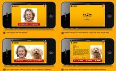 Dog-A-Like FB/mobile image matching app for Pedigree