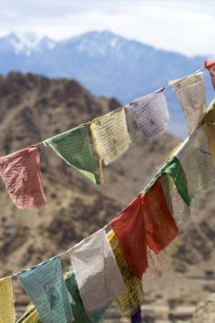 Tibetan Buddhism - Ladakh, photo by Marius Mézerette* Arielle Gabriel writes about miracles and travel in The Goddess of Mercy & The Dept of Miracles also free China toys and paper dolls at The China Adventures of Arielle Gabriel * Tibetan Symbols, Tibetan Buddhism, Himalaya, Om Mani Padme Hum, Prayer Flags, Taj Mahal, Spiritual Enlightenment, Cool Photos, Tibet