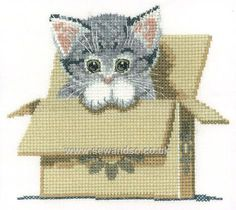 Buy Cat in Box Cross Stitch Kit Online at www.sewandso.co.uk
