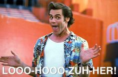 A gallery of 28 Ace Ventura: Pet Detective publicity stills and other photos. Featuring Jim Carrey, Courteney Cox, Sean Young, Dan Marino and others. Funny Comedy, Funny Movies, Good Movies, The Truman Show, Daniel Craig, Keanu Reeves, Loser Meme, Jim Carrey Movies, Jesus Reyes