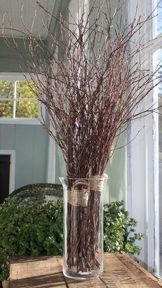 1000 Images About Vase Decor On Pinterest Vase Ideas