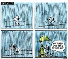 September rains....