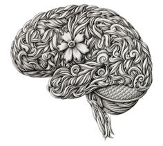 brain flower #illustration #anatomy