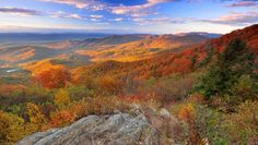 21 Insanely Beautiful Spots To See Fall Colors Across America Shenandoah National Park, Shenandoah Valley, Shenandoah Mountains, Fall Vacations, Us National Parks, Blue Ridge Mountains, Road Trip Usa, The Fresh, Places To See