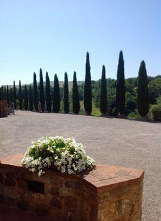 Carpazo Winery