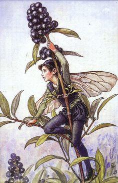 Autumn Berry Fairy