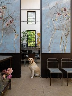 the paris studio of claire basler published in march 2010 elle decor uk - via all things paint and plaster. Claire Basler, Paris Home, Modern Metropolis, French Artists, Art Studios, Chicano, Illustration Art, Style, Interiors