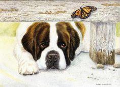 """ A Limited Edition Saint Bernard Print - Michael Steddum Big Dogs, Dogs And Puppies, St Bernard Puppy, Mastiff Puppies, Swiss Mountain Dogs, San Bernardo, Dog Insurance, Art Template, Fotografia"