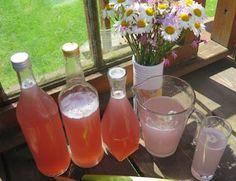 Domácí poklady: Rebarborový sirup