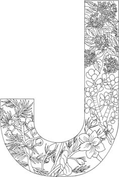 Letter J coloring page from English Alphabet with Plants category. Select from 20946 printable crafts of cartoons, nature, animals, Bible and many more.