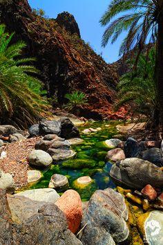 26 صورة ستجعلك ترغب السفر إلى اليمن Socotra, Natural Structures, Largest Countries, Archipelago, Amazing Nature, Continents, Beautiful Landscapes, Beautiful World, The Great Outdoors