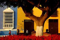 Trujillo, Peru. Hoping to work here next year