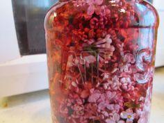 Lilac Vinegar