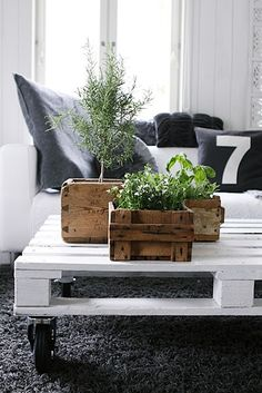 crates for plants, and another pallet coffee table. Love the 7 pillow!