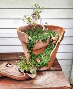 Funny pictures about Broken Pots Turned Into Beautiful Fairy Gardens. Oh, and cool pics about Broken Pots Turned Into Beautiful Fairy Gardens. Also, Broken Pots Turned Into Beautiful Fairy Gardens photos. Garden Terrarium, Succulents Garden, Garden Pots, Garden Houses, Succulent Planters, Diy Garden, Garden Spaces, Balcony Garden, Fairy Houses