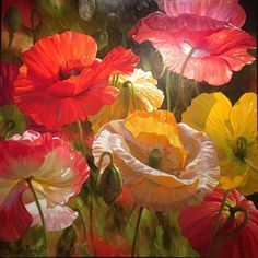Poppy Baroque original oil on canvas by Leon Roulette of Iclandic Poppies aglow in sunlight. Poppy Flower Painting, Watercolor Flowers, Flower Art, Watercolor Paintings, Poppies Painting, Oil Paintings, Arte Floral, Flower Pictures, Oil Painting Abstract