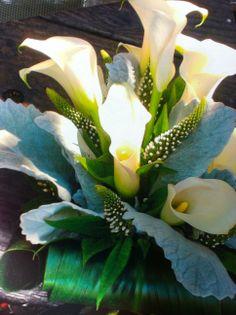 Gorgeous Calla Lily arrangement by Alena Jean