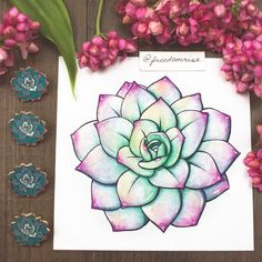 Succulent Pin and Print! Freedom Rise | Becca Stevens