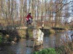 Budowa wschodniego szlaku rowerowego Green Velo w województwie lubelskim jest już na finiszu. Rowerzyści gotową trasą pojadą na początku października. - Spośród innych województw jesteśmy liderem, jeśli chodzi o realizację tego projektu - mówi Dorota Lachowska z LROT .