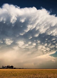 Kansas Mammatus (has been cropped). By Melanie Kern-Favilla You can see the original at http://spiffypix.com/sky