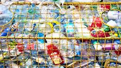 In perhaps the biggest push to bump New York Citys recycling rate to 30 percent by Mayor Michael Bloomberg announces the immediate inclusion of rigid plastics in the citys recycling program.