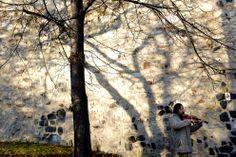 Autumn around the world 2013 - The Big Picture - Boston.com