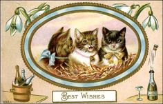 vintage Happy New Year cats